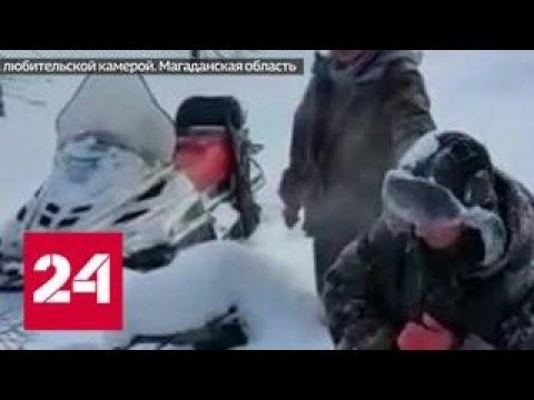 В Магаданской области рыбинспектора хотят судить за задержание браконьеров - Россия 24 - Смотреть видео онлайн