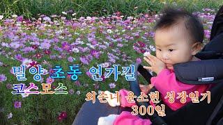 외손녀 윤소현의 성장 …