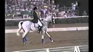 Seldom Seen Retirement Dressage At Devon 1987