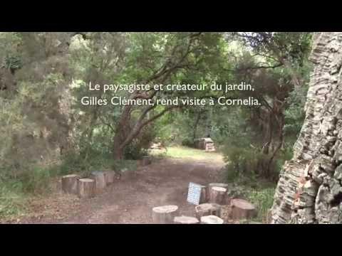 """Festival Land Art """"Art et Paysage au Jardin des Méditerranées"""" au Domaine du Rayol"""