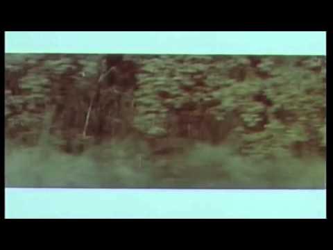 Upwellings - Dubbin´ At The Strobe feat. Michal Zerang (Telrae 028)