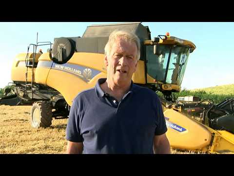 Farmer warns US-UK trade deal could drive down standards in food industry