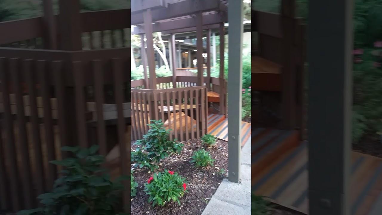 Dinah S Garden Hotel In Palo Alto Lagoon Walk Youtube