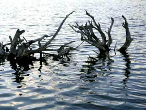 Driftwood ~ Justin Hayward