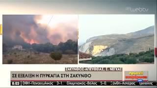 <span class='as_h2'><a href='https://webtv.eklogika.gr/kalyteri-i-eikona-ton-pyrkagion-se-zakyntho-kai-loytraki-16-09-2019-ert' target='_blank' title='Καλύτερη η εικόνα των πυρκαγιών σε Ζάκυνθο και Λουτράκι | 16/09/2019 | ΕΡΤ'>Καλύτερη η εικόνα των πυρκαγιών σε Ζάκυνθο και Λουτράκι | 16/09/2019 | ΕΡΤ</a></span>