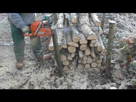 Chainsaw videos: Hungry? Then use your chainsaw to do a