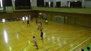 2015年5月17日群馬県高校総体ハンドボール大会3位決定戦1