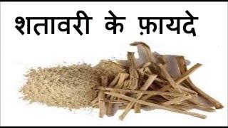 शतावरी के फ़ायदे | Health Benefits of Shatavari | Shatavari - Male/female reprodcutive tonic thumbnail