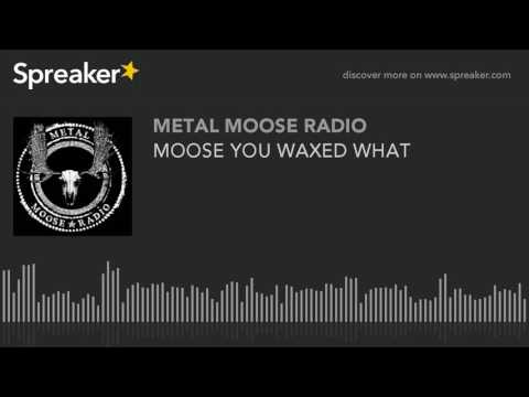 MOOSE YOU WAXED WHAT (made with Spreaker)