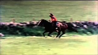 Paul & Linda McCartney - 3 Legs [High Quality]