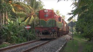 Sri Lankan trains (Class M7 & S11)