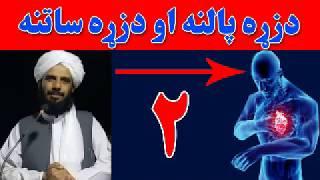Mohammad Yasin Fahim Pashto Islami Bayan  Part 2    دزړه پالنه او دزړه ساتنه