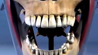River Road Dental: TMJ Dysfunction