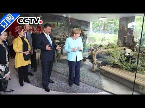 《华人世界》 20170707 | CCTV-4