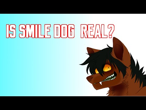 Is Smile Dog Real?
