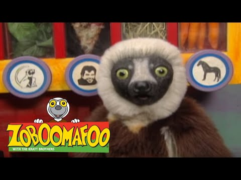 Zoboomafoo 214 - Bovine (Full Episode) | Cute Animals | Cute