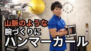 【筋トレ集】ハンマーカール ~腕橈骨筋&上腕筋づくりに~