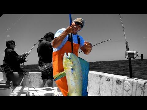 Catching Mahi-Mahi, Ono(Wahoo), And Yellowfin Tuna!!!(Offshore Fishing)