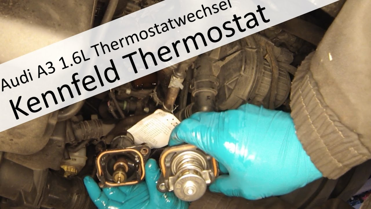 Kennfeldgesteuertes Thermostat wechseln am Audi A3 1,6L - YouTube