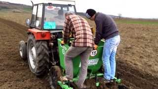 Potato Planting With Bomet & Tractor Tafe 42 Di