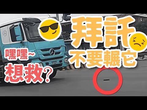 台灣騎蹟 EP.02 : 為了救手套香港人居然?!!