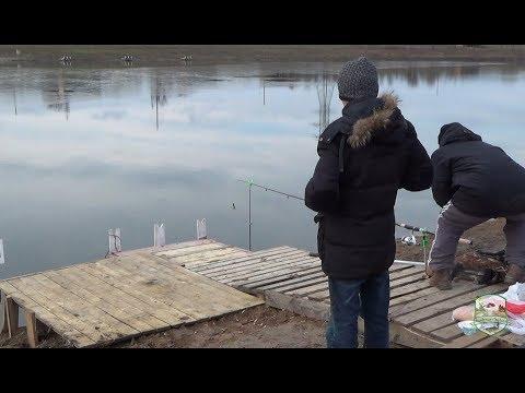 Форелевая рыбалка в Академии Отдыха. Мгновения успехов одного дня 21.12.2017.