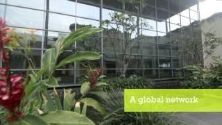 INSEAD Leadership Programme for Senior Indian Executives thumbnail