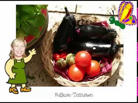 balkon tomaten tipps pflanzen pflegen ernten youtube. Black Bedroom Furniture Sets. Home Design Ideas