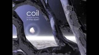 Coil - Strange Birds
