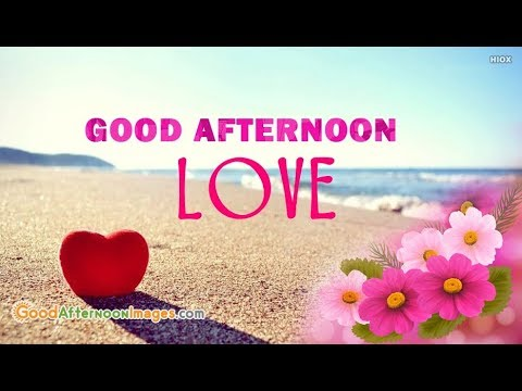 Good Afternoon Whatsapp Status Whatsapp Video Wisheslove Song