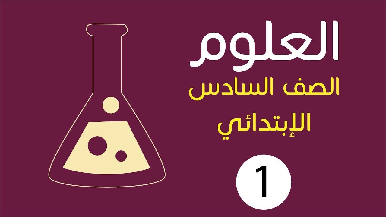 حل كتاب العلوم للصف السادس الترم الاول