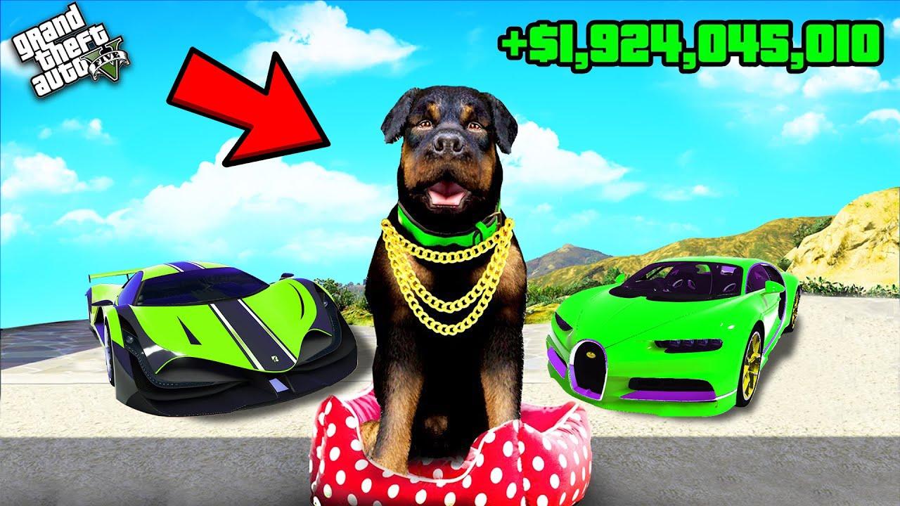 GTA 5 : CHOP Become BILLIONAIRE in GTA 5! (Funny)