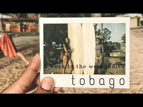 A Week in Tobago | Travel Blog | Adventures of Bella
