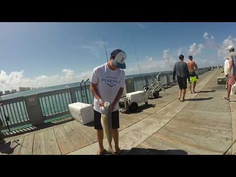 Pier Fishing Panama City, Florida 2017 HD