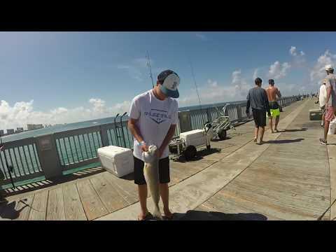 Pier Fishing Panama City, Florida 2017 HD