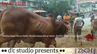 018 | Eid ul Azha 2018 | Unloading Bulls | Rainy Day | Traditional ZinZira Haat | ZbGH 2019