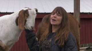 Learning to Love Again at Farm Sanctuary