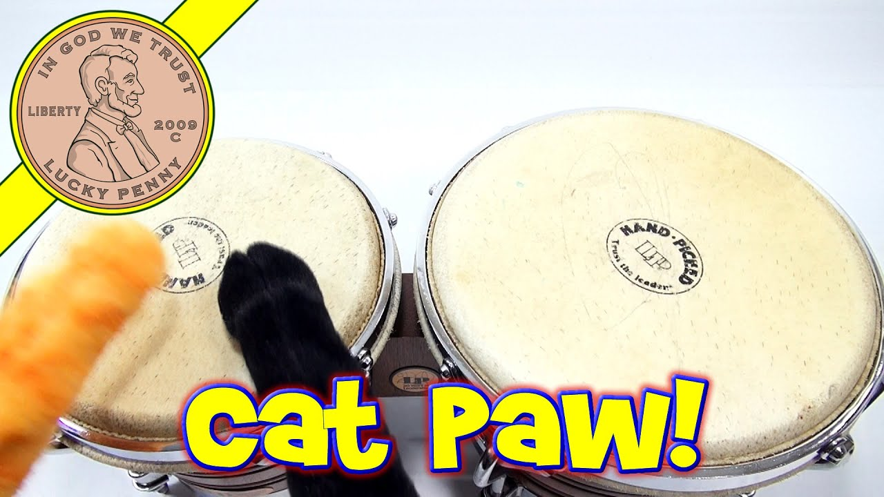Cat Paws - Feel The Furry, Wicked Cool Toys - YouTube