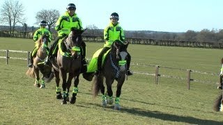 World Horse Welfare helps train Mounted Special Police