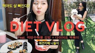 [다이어트Vlog]🌞🌈다이어트브이로그 | 먹어도 살 빠지는 저탄수화물 김밥,다이어트 떡볶이 먹방/비타민젤리/애견카페/댕댕이/백수일상브이로그/AlohaSunny diet blog