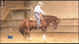 Reining: Un goût de western