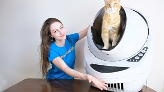 Litter Robot III Connect Review (We Tested It For 2 Weeks)