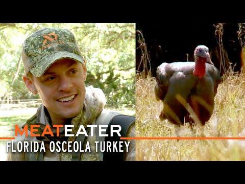 Spring Break: Florida Osceola Turkey   S4E09   MeatEater