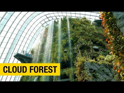A Tour of Gardens by the Bay in Singapore: Part 2 – Cloud Forest