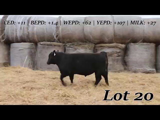 Sweiger Farms Lot 20