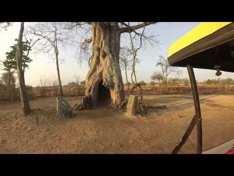 GoPro part 2 - Jozani Forest, Zanzibar & Mikumi National Park, Tanzania- 2015