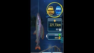 COPACABANA ARTICK GRAYLINK NEW FISH,, FISHING HOOK ANZOL DE PESCA