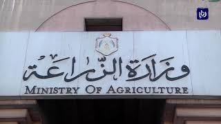توافق على تنظيم الاستيراد بين وزارة الزراعة وأصحاب شركات اللحوم والمواشي (23/12/2019)