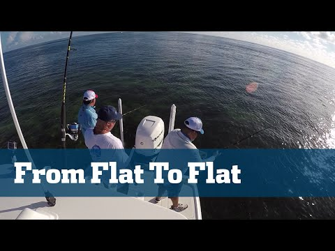 Florida Sport Fishing TV - Pro's Tip Shark Fishing Secret Rigging Tip Florida Keys Inshore Flats