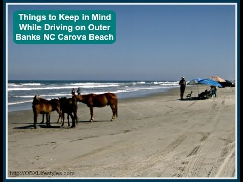 Things To Keep In Mind While Driving On Outer Banks Nc Carova Beach You